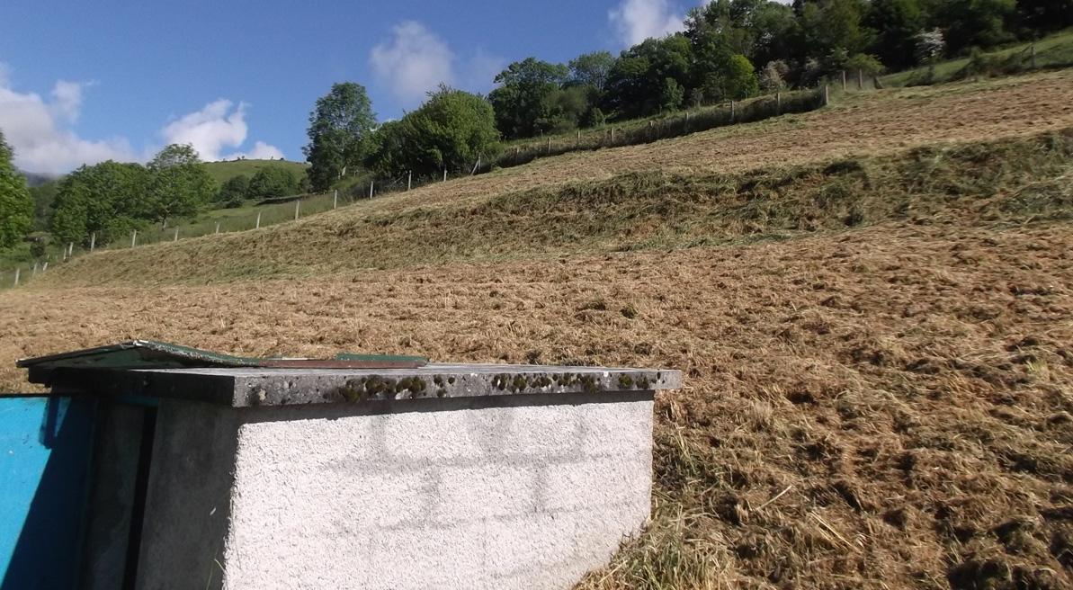 Cathervielle-reservoir-Reseau31